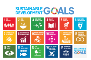 Real global sustainability: 17 goals for human dignity and not to leave anyone behind - by S. Calvani