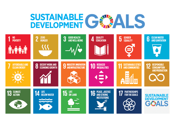 Real global sustainability: 17 goals for human dignity and not to leave anyone behind – by S. Calvani